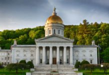 Government Structure- The Vermont Constitution